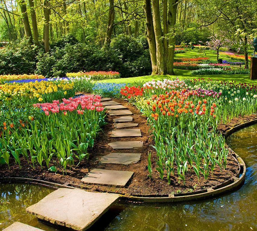 Садовый сад в картинках