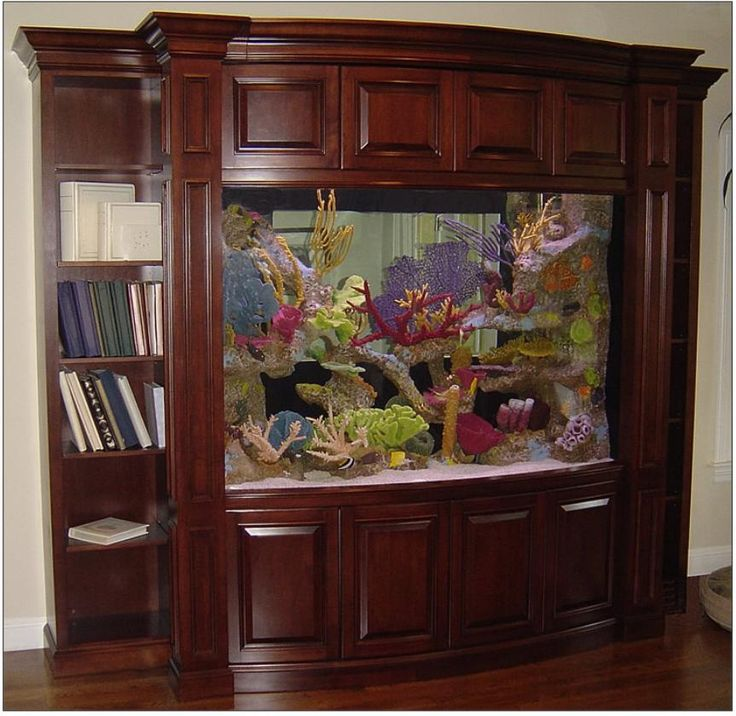 если фото аквариумов как мебель девочке исполнилось девять